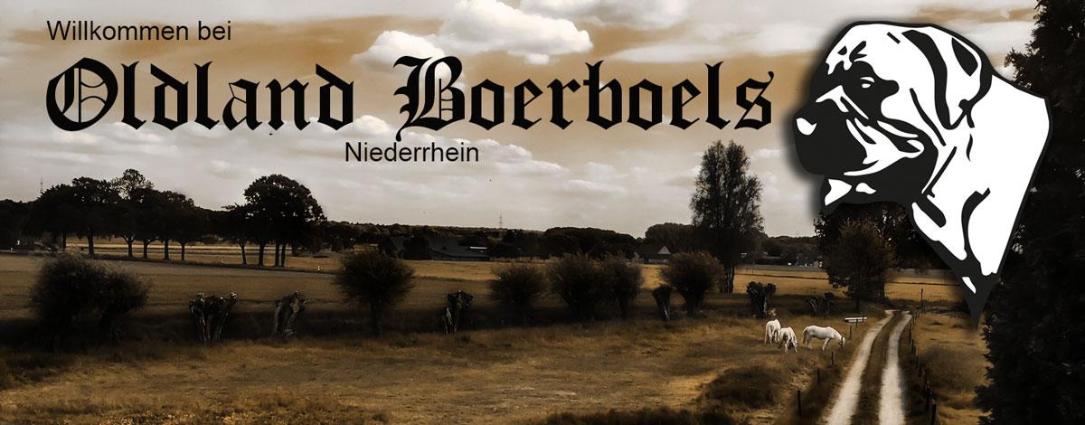 Oldland-Boerboels